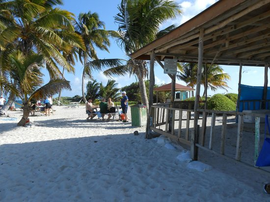 Belize Cruise Excursions - Goff's Caye Beach and Snorkeling Tour : Picnic tables are available for sitting down to eat.