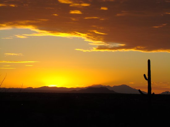Hacienda del Desierto Bed and Breakfast: sunset view from back