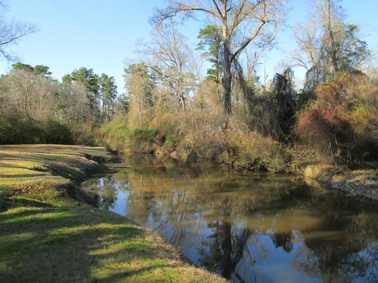 Tchefuncte Campground : River for Swimming / Wading