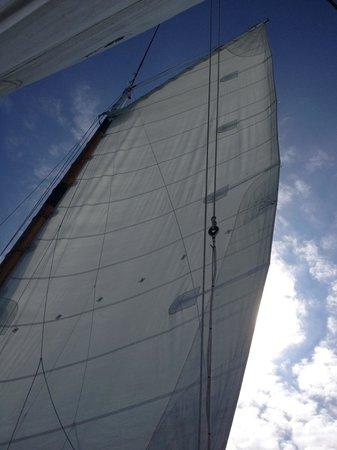 Classic Harbor Line: Beautiful view!