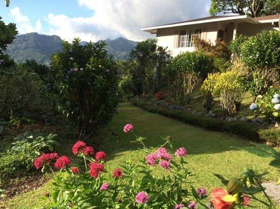 La Montana y el Valle Coffee Estate Inn: Cabin and grounds