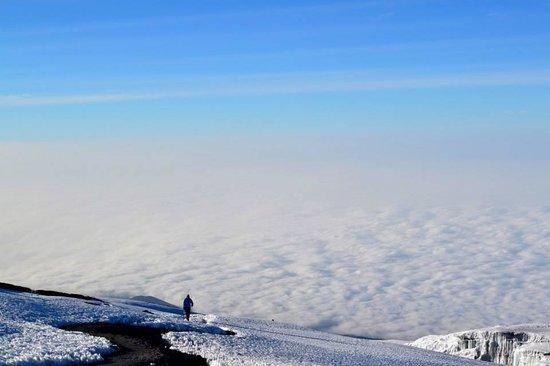 Arusha Hostel Lodge & Adventures: summit of kili: enough said