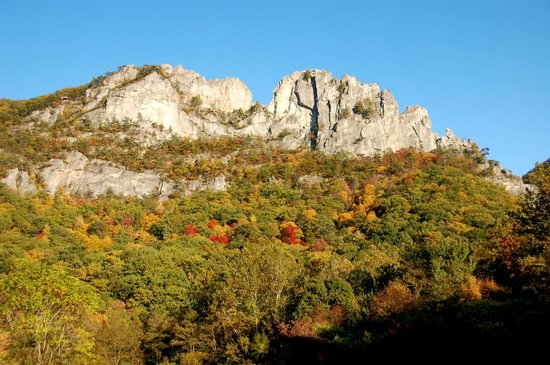 Smoke Hole Caverns & Log Cabin Resort : Seneca Rocks (15 MIN) Horseback riding to the top