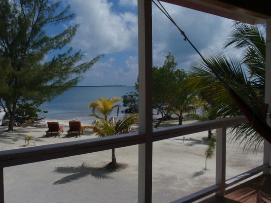 Coco Plum Island Resort: View from stingray