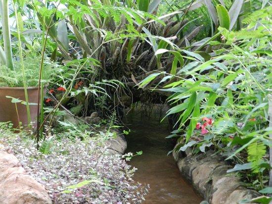 Foto de jardin botanico santa cruz santa cruz vivero for Vivero el botanico