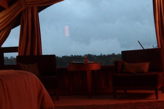 Huilo Huilo Nothofagus Hotel : vista del cuarto
