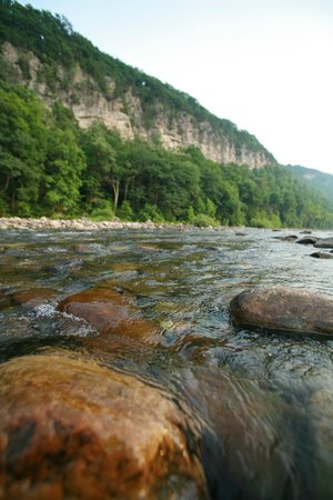 Smoke Hole Caverns: North Fork of the South Branch River (Stocked once a week Mar, Apr. and May)