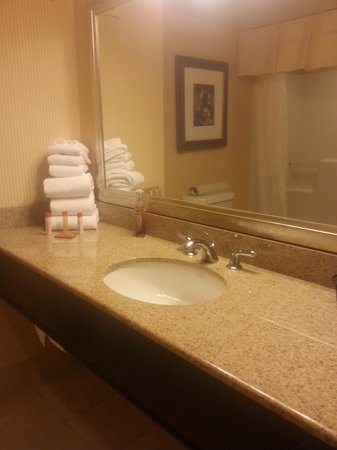 Hollywood Casino Tunica Hotel : Bathroom