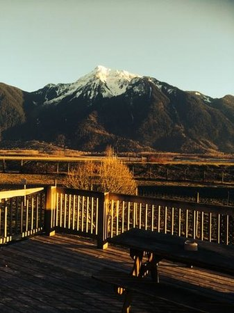 Fraser River Lodge: A sunny january afternoon view.