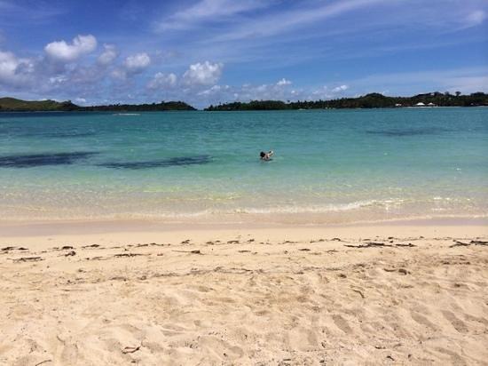 Plantation Island Resort: Beautiful beaches and water