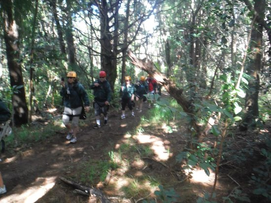 "Kapalua Ziplines : ""Hiking"" to zip lines"