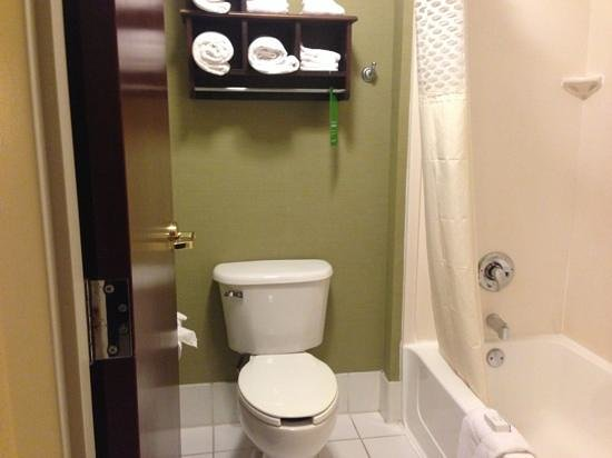 ‪هامبتون إن آند سويتس بوينتون بيتش: Toilet and Shower in 2 Queen Larger Suite‬