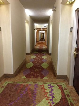 Hampton Inn & Suites Boynton Beach: Hallway on 3rd Floor