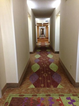 Hampton Inn & Suites Boynton Beach: Hallway on 4th Floor