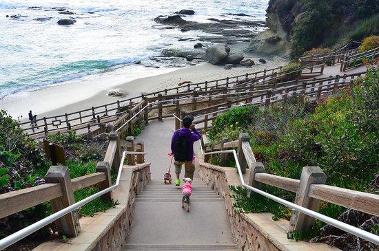 Laguna Beach: getting down to the beach