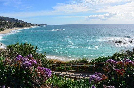 Laguna Beach: landscape