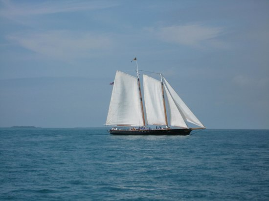 Classic Harbor Line : Sailing doesn't get any better than this
