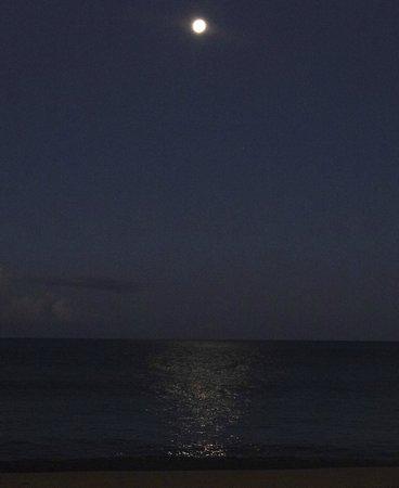 Honua Kai Resort & Spa: 6 AM Moon reflecting on water Houna Kai- taken with pocket camera