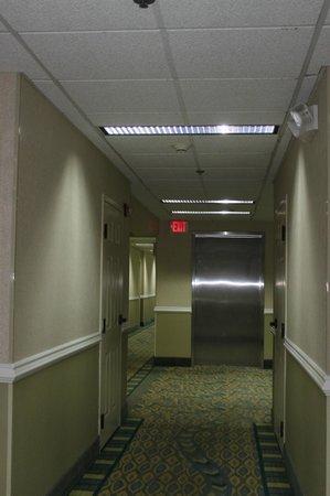 Comfort Suites Seven Mile Beach: second floor hallway