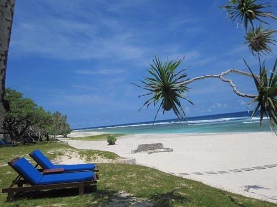 Tamanu on the Beach : plage