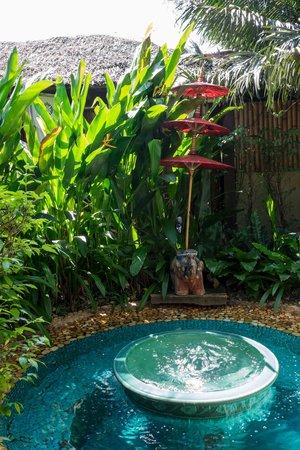 Oasis Secret Garden Spa: Small pond in a small garden