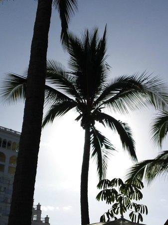 Hotel Riu Palace Pacifico: again!