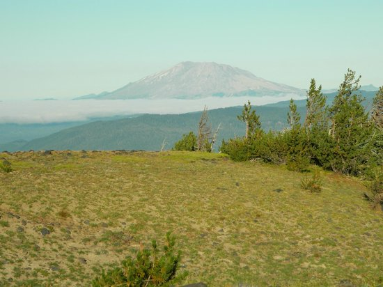 Gifford Pinchot National Forest: Mt. St. Helens from High Camp on Mt. Adams