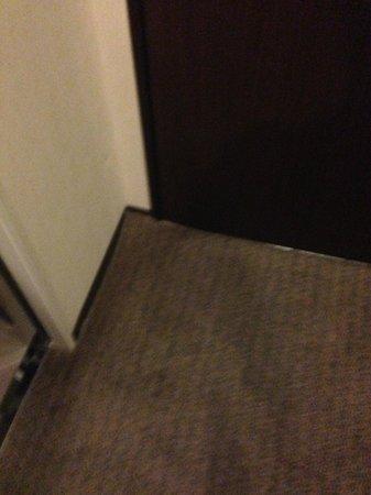 Citadines Central Shinjuku Tokyo: carpet loose on floor