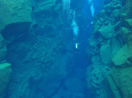 Scuba Iceland: the divers ahead of us