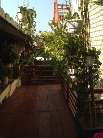 Ha An Hotel: Hanging garden just off our deck on the 2nd level