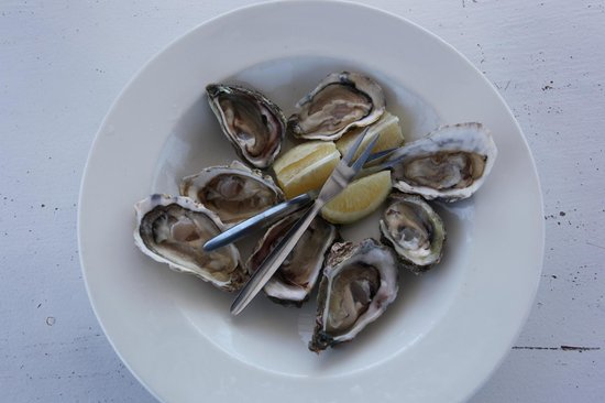 Oyster Tour: Wild & Cultivated Oysters