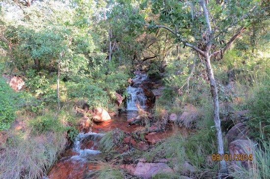 Shondoro Mountain Retreat: Waterfal on Shondoro