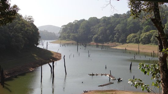 Periyar Tiger Reserve : The view from the refreshment hut