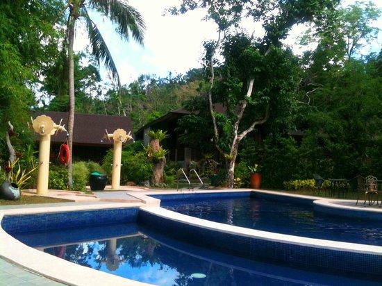 Sophia's Garden Resort : Swimming pool and showers