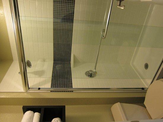 Staybridge Suites Dulles: Bathroom