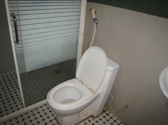 V3 (Veni Vidi Vici) Hotel: toilet & shower cubicle