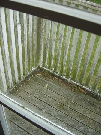 Highden Manor Estate : Deck for fire exit at back door in Lodge