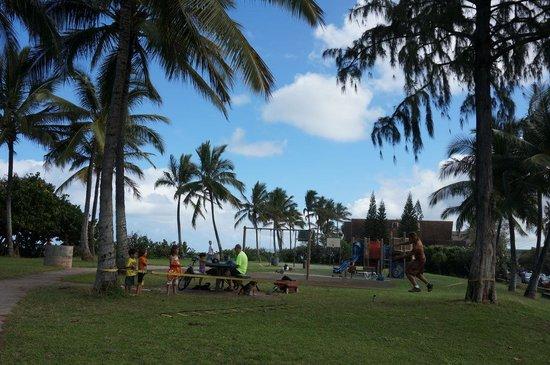 Haleiwa Beach Park : Aweoweo Beach Park ファミリーで楽しめます。