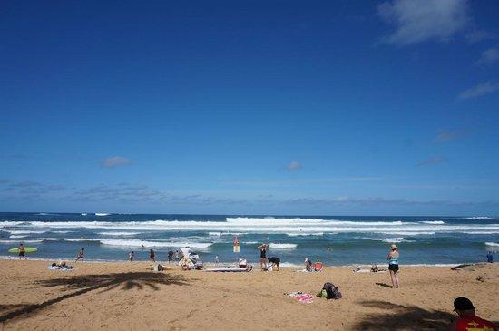 Haleiwa Beach Park : Haleiwa Ali'i Beach Park サーフィンのメッカ
