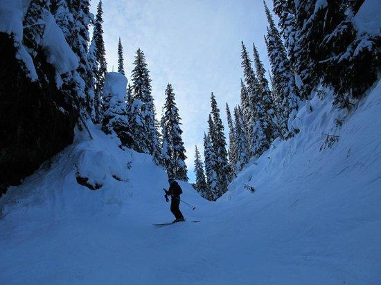 Revelstoke Mountain Resort: Looking back up at the mountain near the exit of the North Bowl