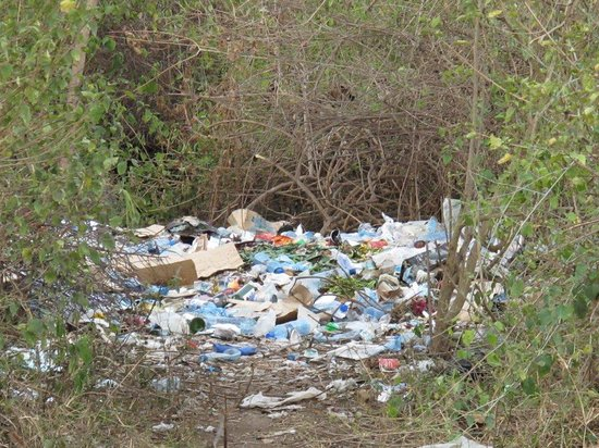 Arusha Safari Lodge : Piles of trash in the lodge's garden