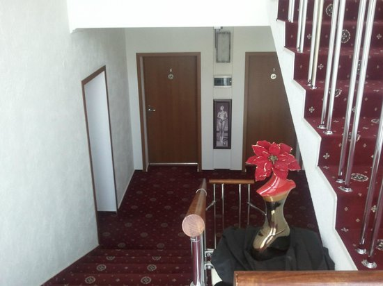 Blues Hotel : лестница