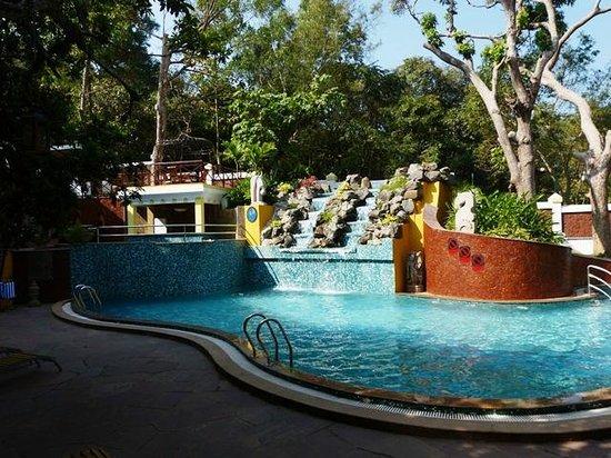Saligao, Hindistan: Pool with jacuzzi n bar on top