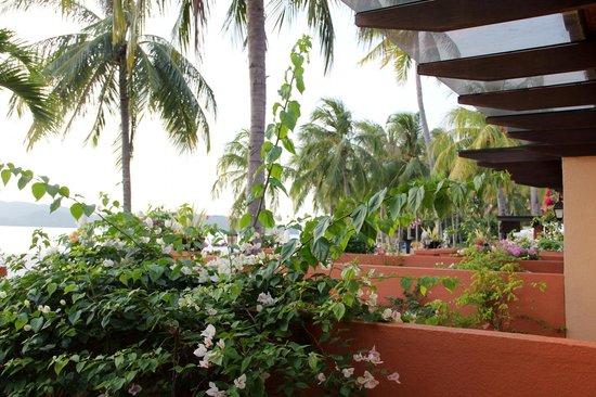 Casa del Mar, Langkawi : La végétation !