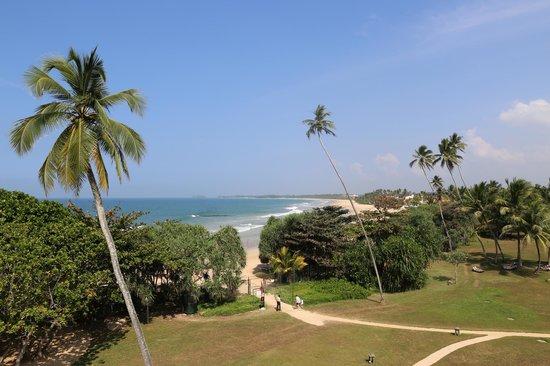 Vivanta by Taj - Bentota: The coast line (view from the beach area)