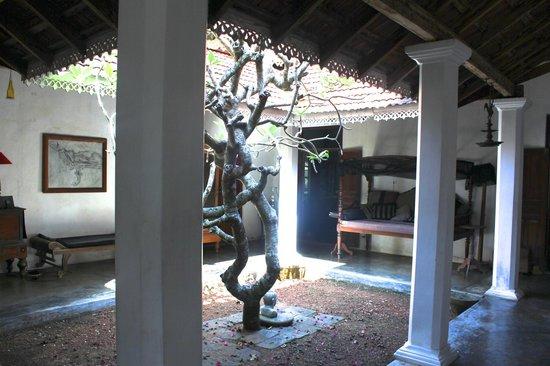 Villa de Zoysa: courtyard