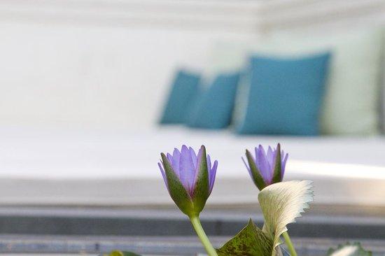 137 Pillars House Chiang Mai: Öffentlicher Loungebereich