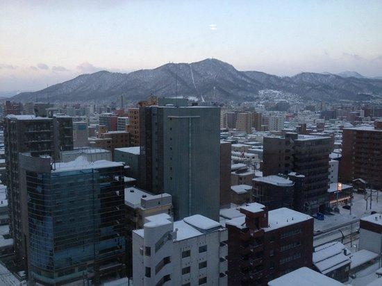 Sapporo Excel Hotel Tokyu : Snowy Sapporo City