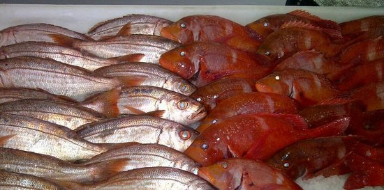 On The Harbour: Lovely Fresh Fish