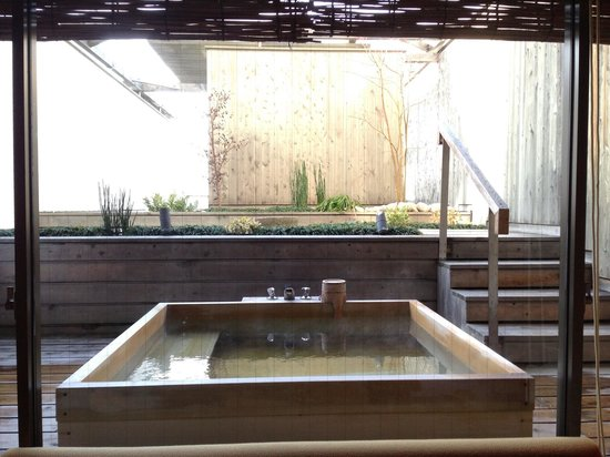Hotel Meizanso: Japanese room with open air onsen